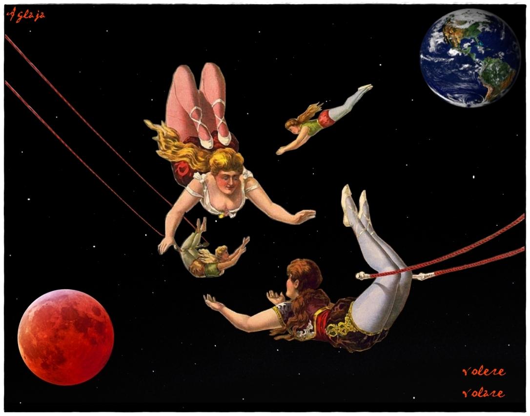 acrobate1
